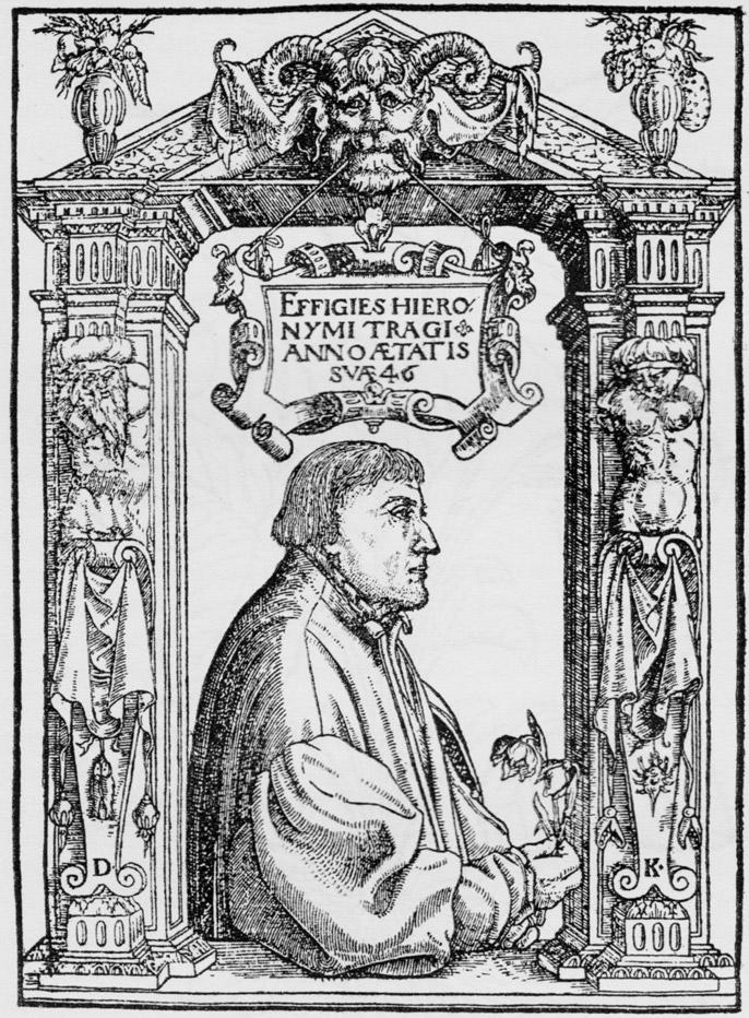 Bock Hieronymus