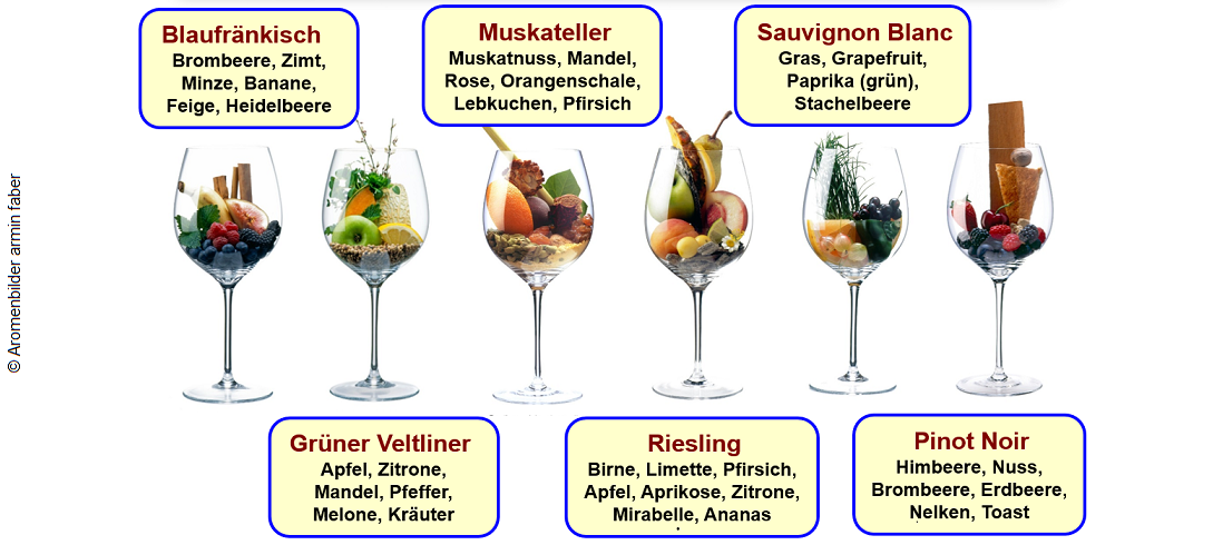 typical varietal aromas