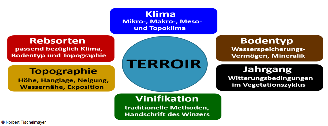 Criteria for the terroir