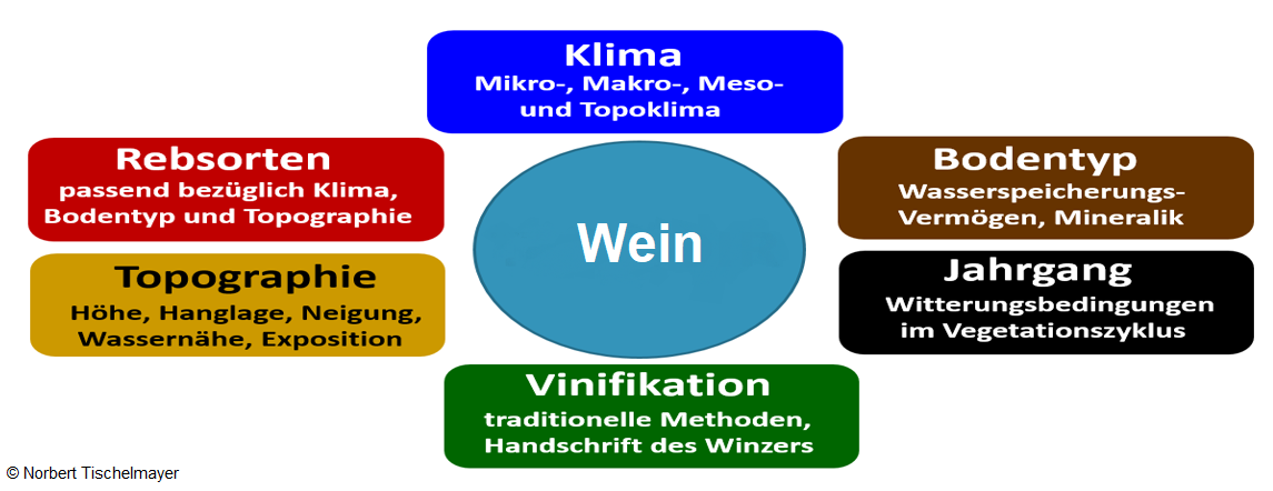 Criteria for a wine: topography, soil type, climate, grape variety, vinification and vintage