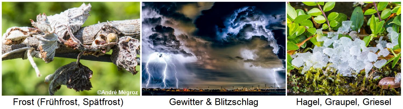 Frost / thunderstorms & lightning / hail