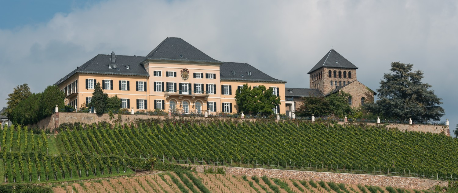 Castle Johannisberg with vineyards