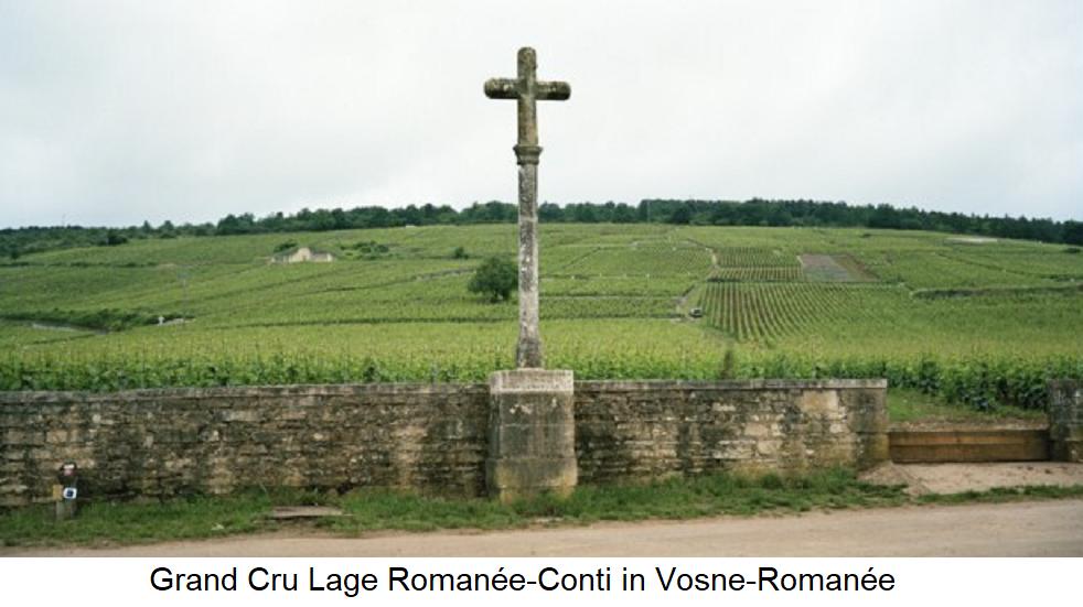 Grand Cru location Romanée-Conti in Vosne-Romanée