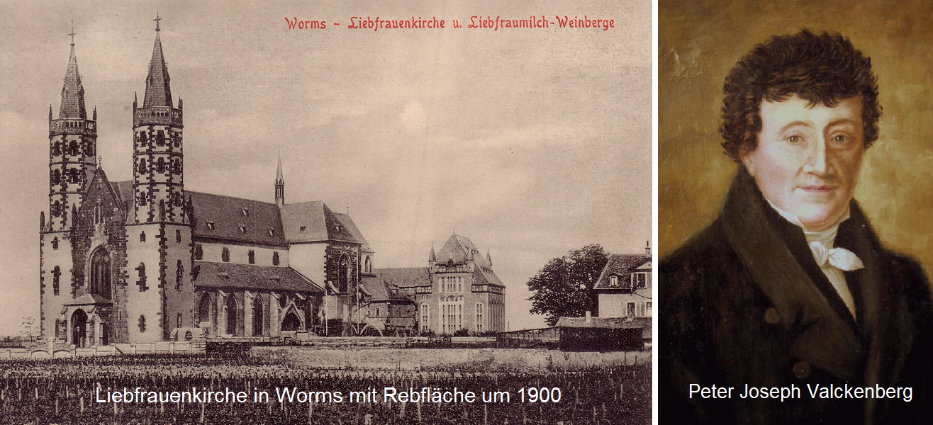 Liebfrauenkirche in Worms with vineyards - Peter Joseph Valckenberg