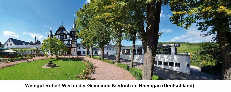 Weingut Robert Weil in Kiedrich im Rheingau (Deutschland)