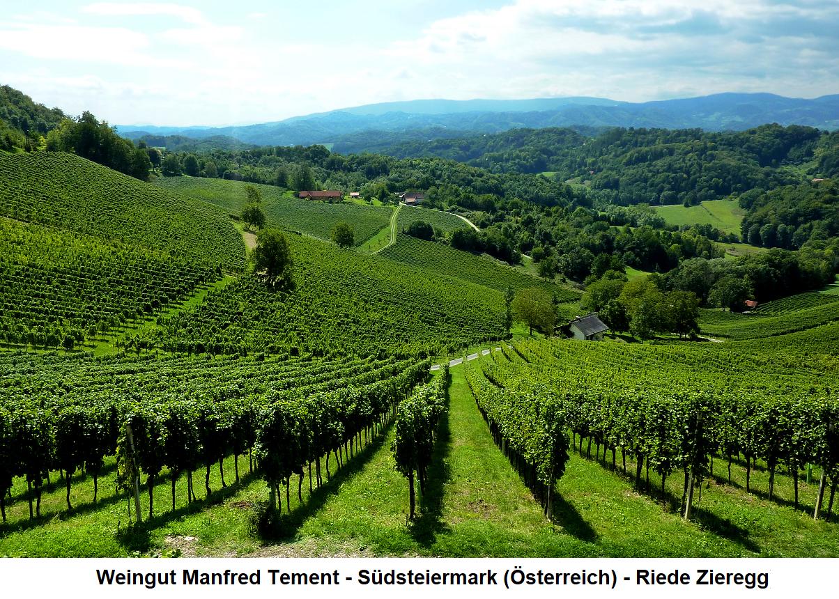 Weingut Manfred Tement Südsteiermark (Österreich) - Riede Zieregg