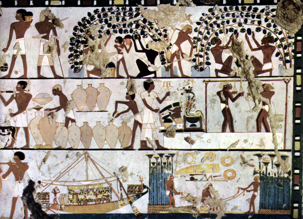 Painting from the tomb of Chaemwese in Thebes around 1450 BC Chr. With motives of the vintage and winemaking