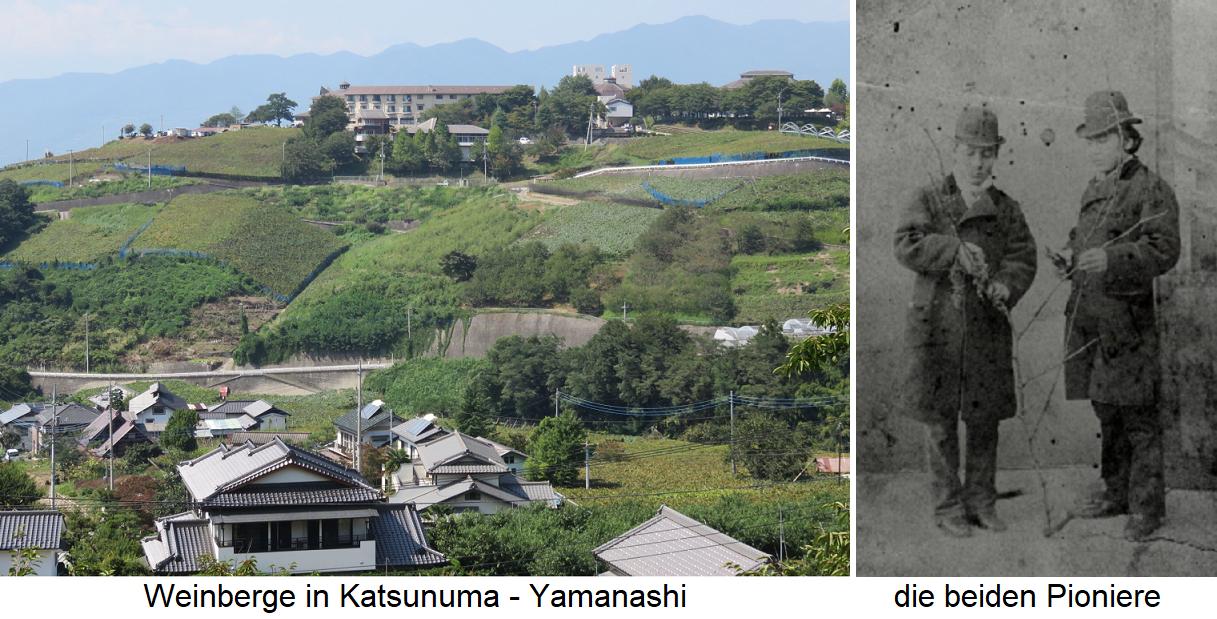 Yamanashi - Winemaking and the pioneers Masanari Takano and Ryuken Tsuchiya