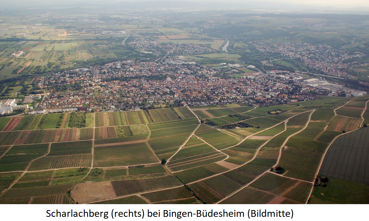 Scharlachberg - single location (right in the picture) and Bingen-Büdesheim (center)