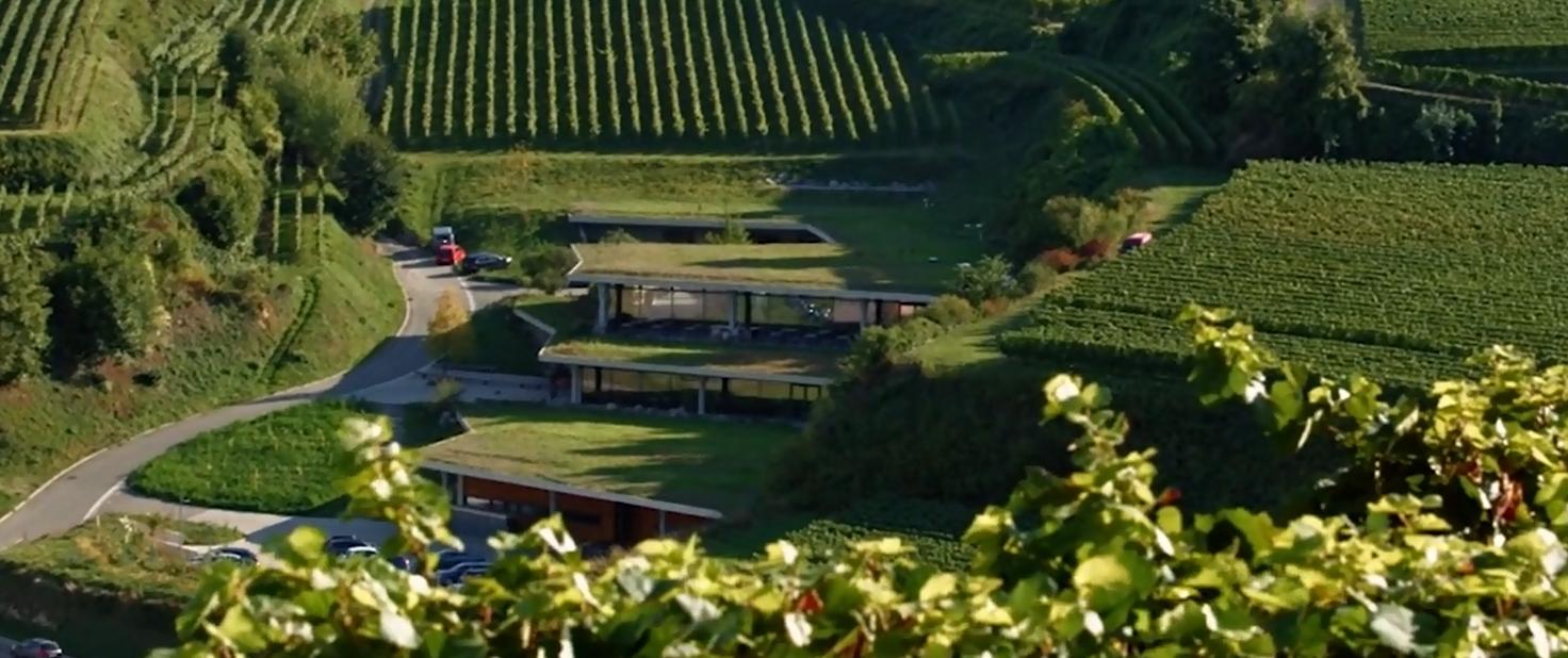 Kaller Franz - winery building