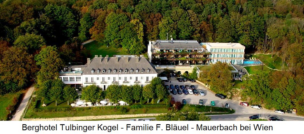 Wine ZTu dishes - Berghotel Tulbingerkogel - Frank Bläuel family - Mauerbach near Vienna - general view