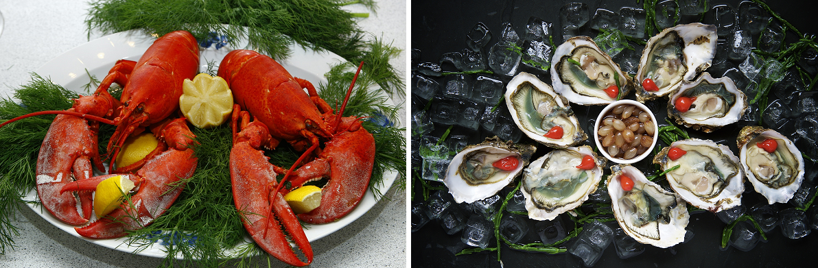 Wine to dine - lobster and oysters