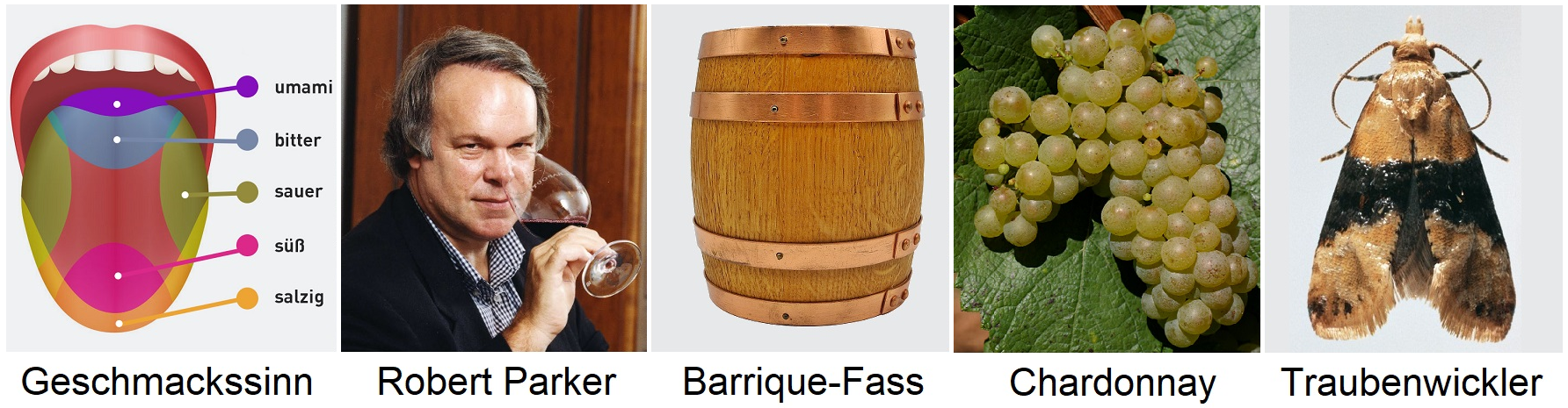 Weinglossar Tags - Taste, Robert Parker, Barrique barrel, Chardonnay grape, Grape wrapper