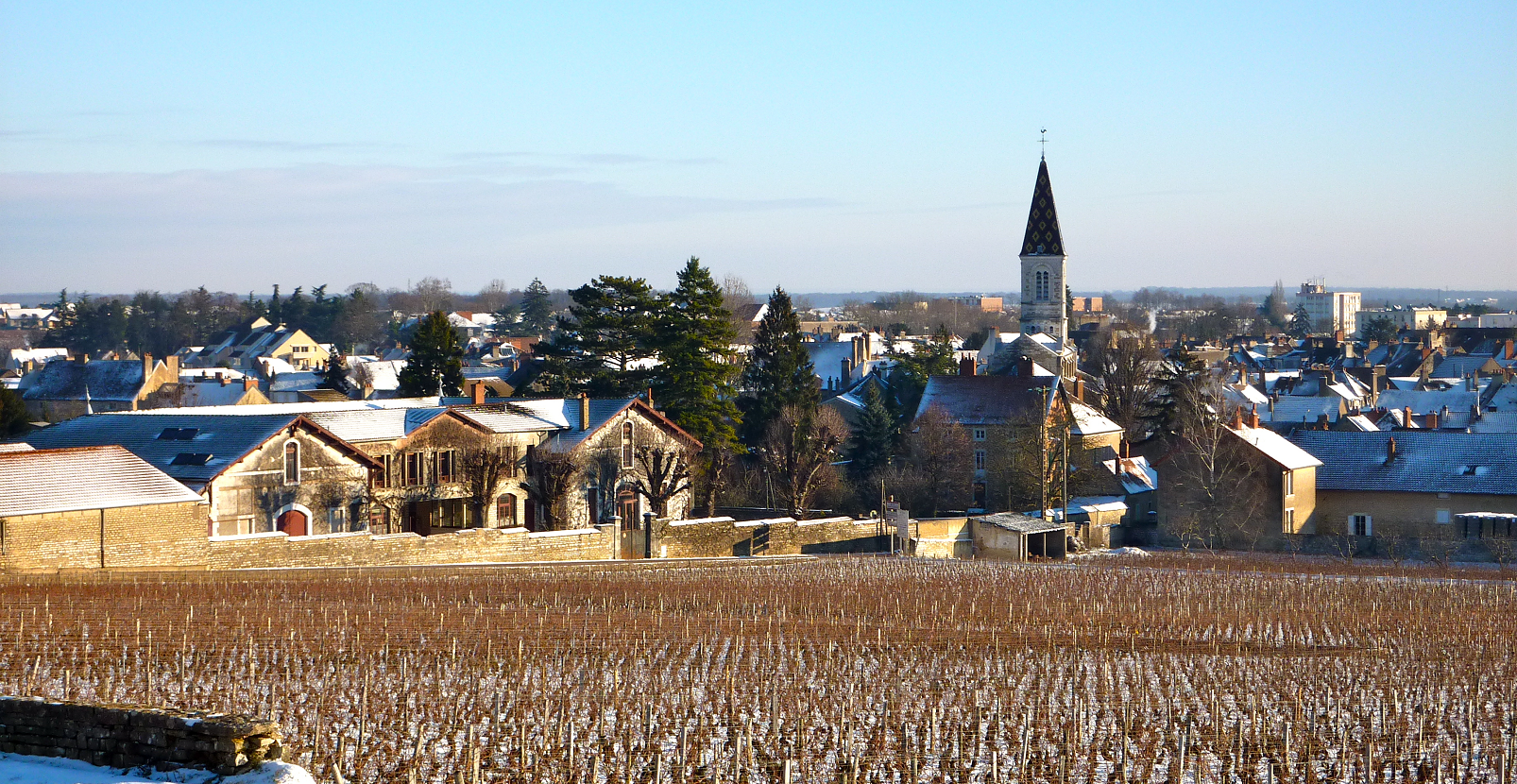 Nuits-Saint-Georges - commune with vineyards in winter