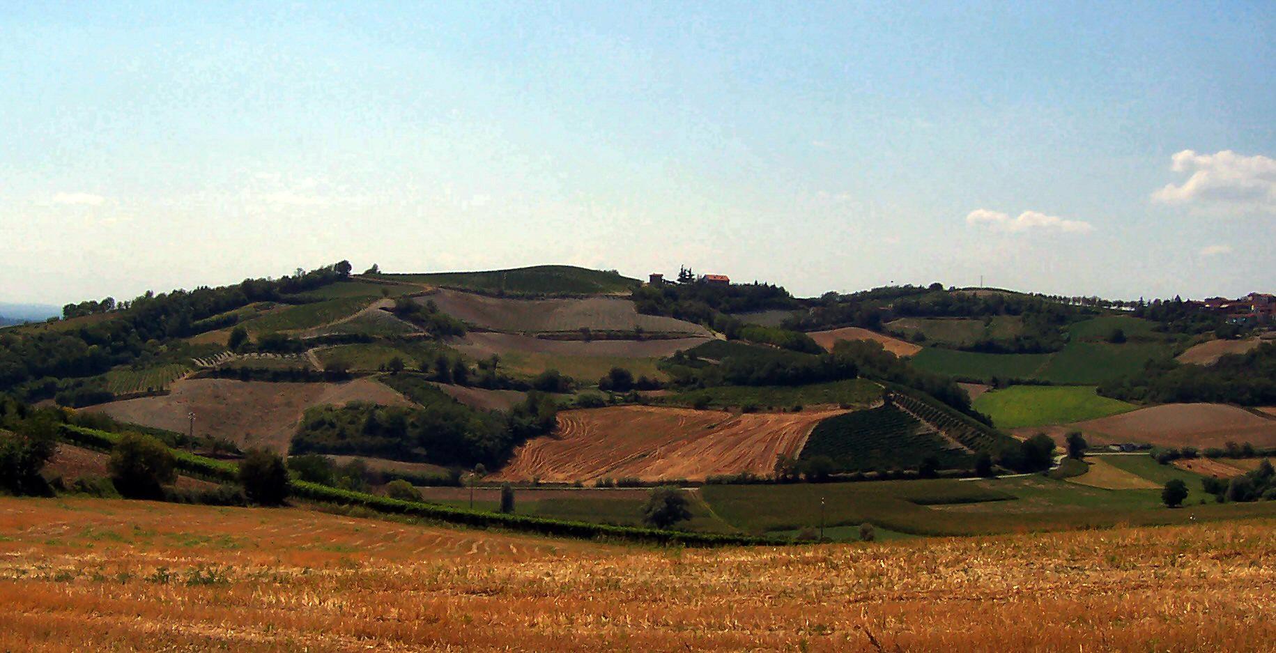 Monferrato - hill