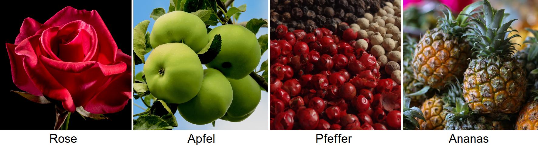 Flavorings - rose, apple, pepper, pineapple