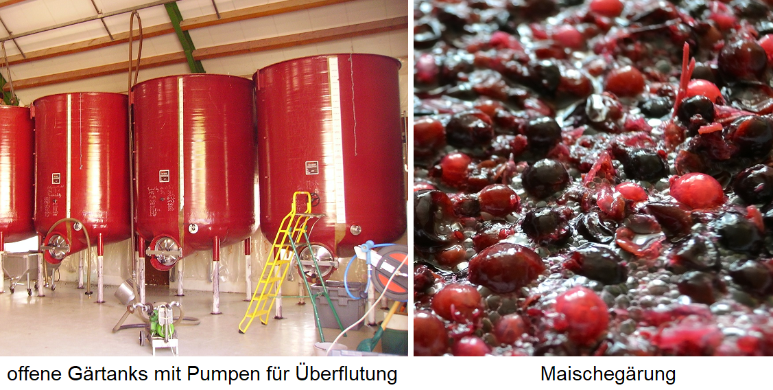 Mash fermentation - open fermentation tanks with pumps for flooding / fermenting mash