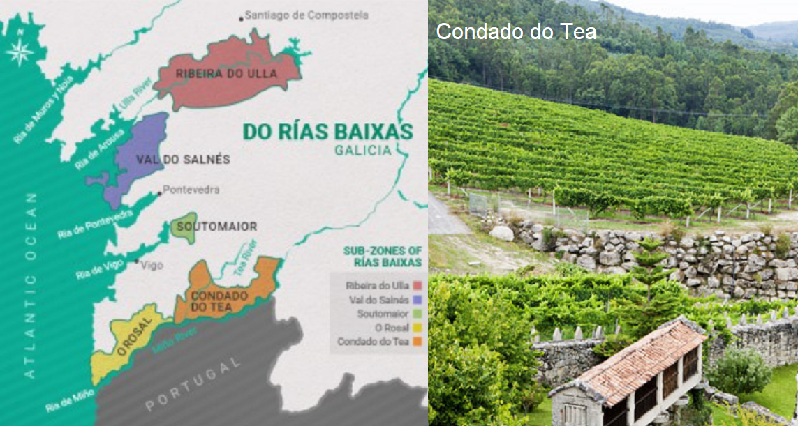 Rías Baixas - Map and Condado do Tea Vineyards