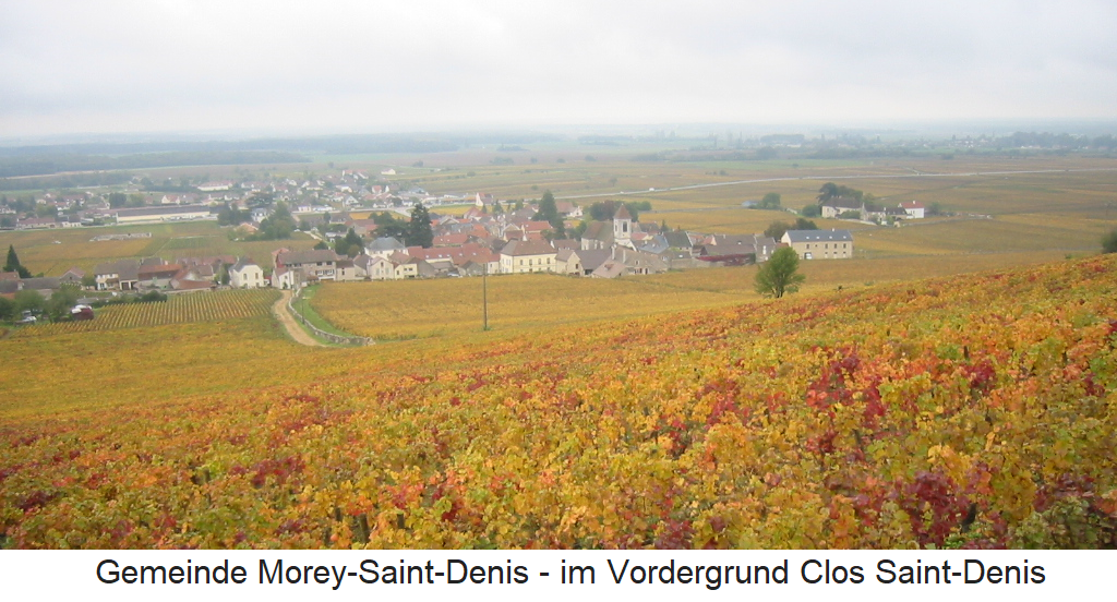 View over the commune of Morey-Saint-Denis, in the foreground the Clos Saint-Denis