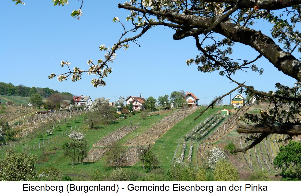 Eisenberg - Eisenberg at the Pinka with vineyards