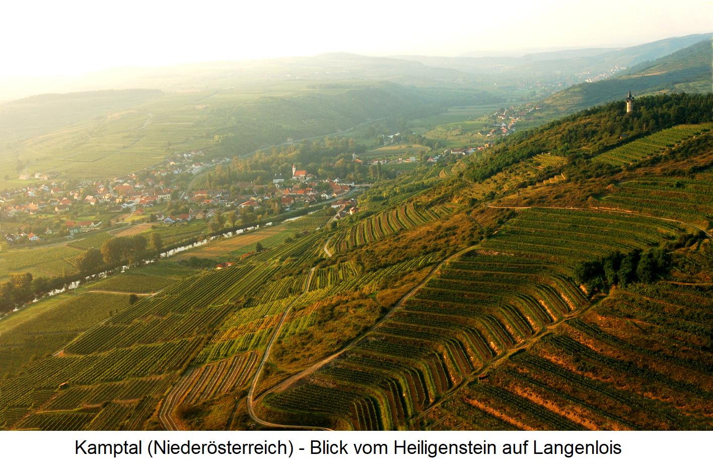 Langenlois - View of the Langenlois from Heiligenstein