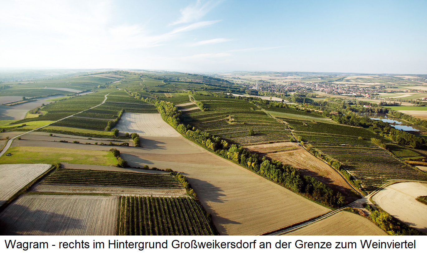Wagram - vineyards with right in the background Großweikersdorf