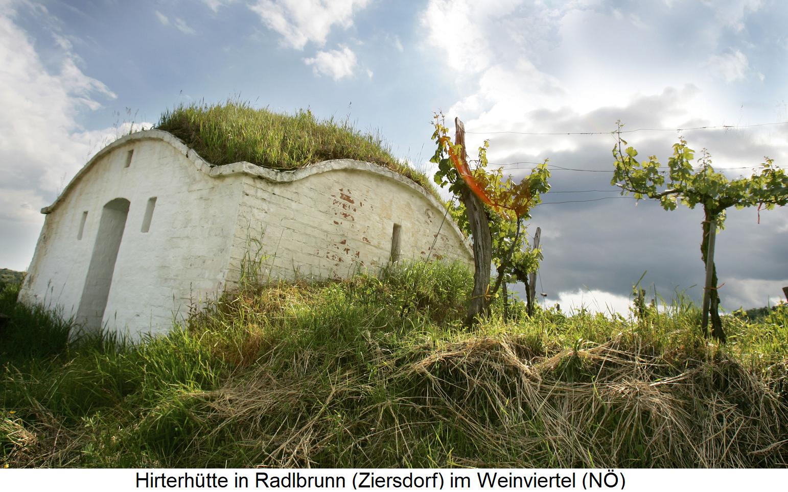 Weingartenhüter - Hirterhütte in Radlbrunn (Zierdsdorf) in the Weinviertel (Lower Austria)