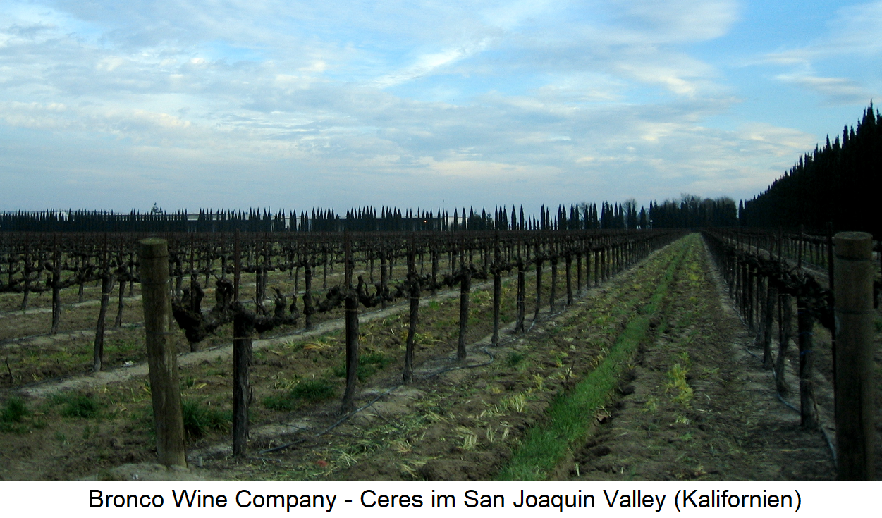 Bronco Wine Company - Vineyards in the San Joaquin Valley