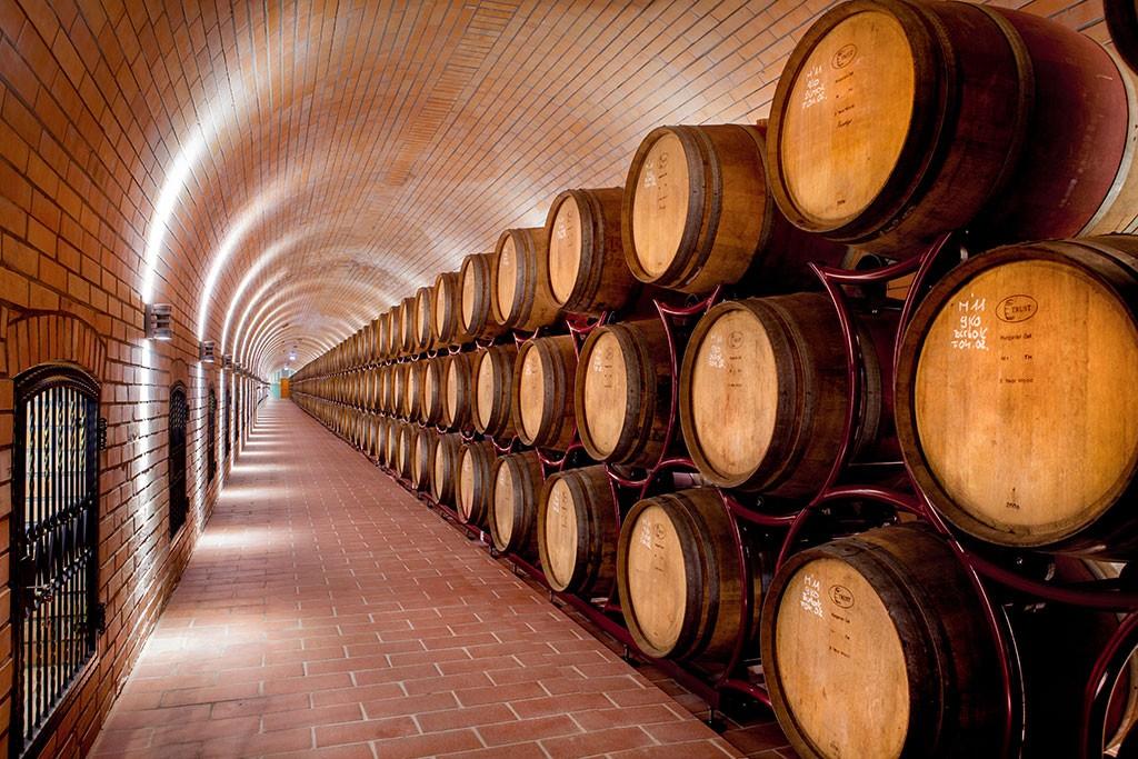 Bulk wine - barrel cellar with countless barrique barrels