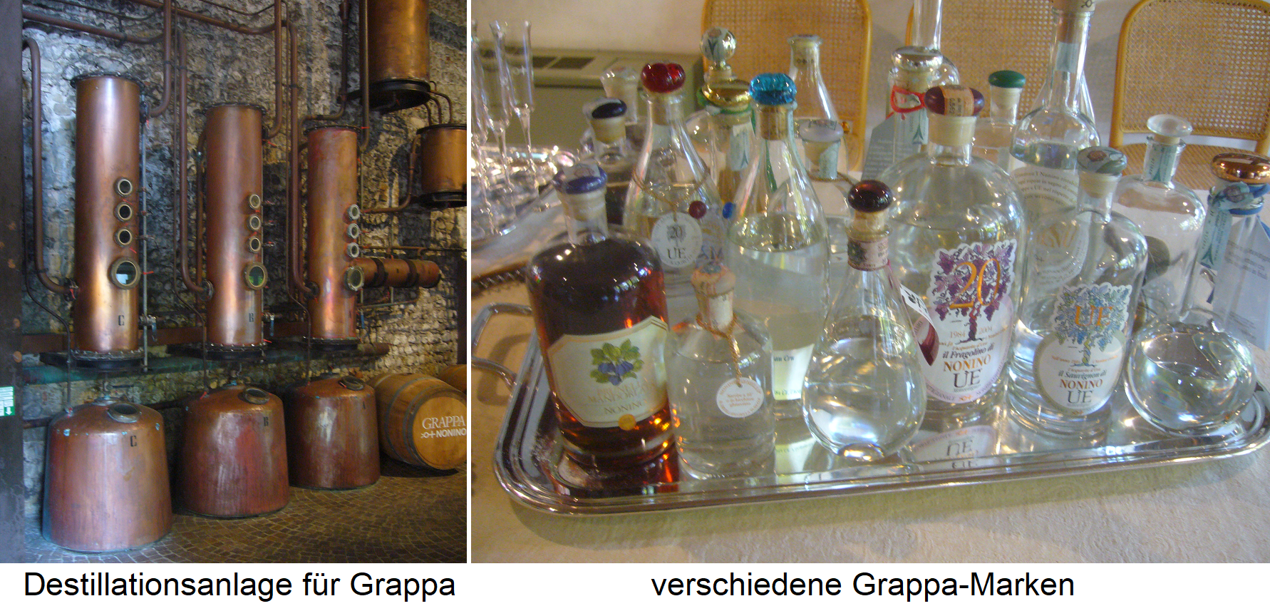 Grappa distillation plant and grappa brands