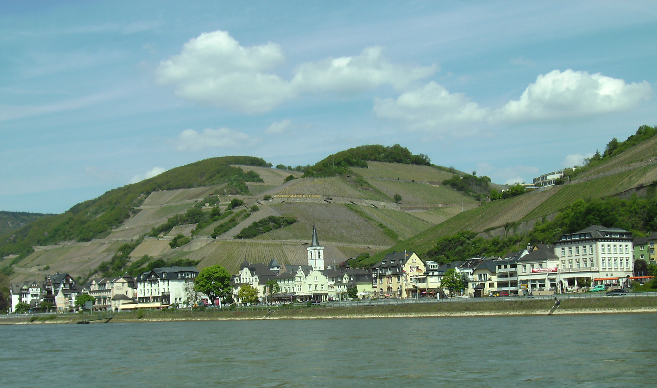 Assmanshausen - seen from the Rhine with city and vineyards