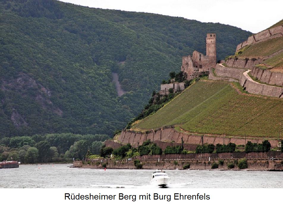 Rüdesheimer Berg - mit Burg Ehrenfels