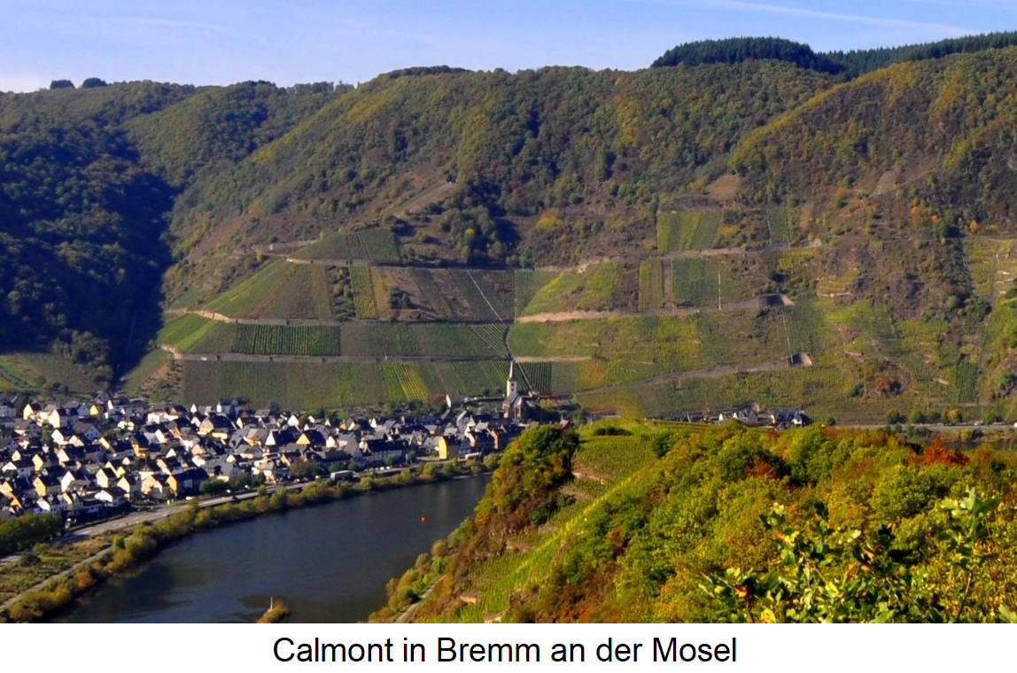 most vineyard - Calmont in Bremm (Moselle)