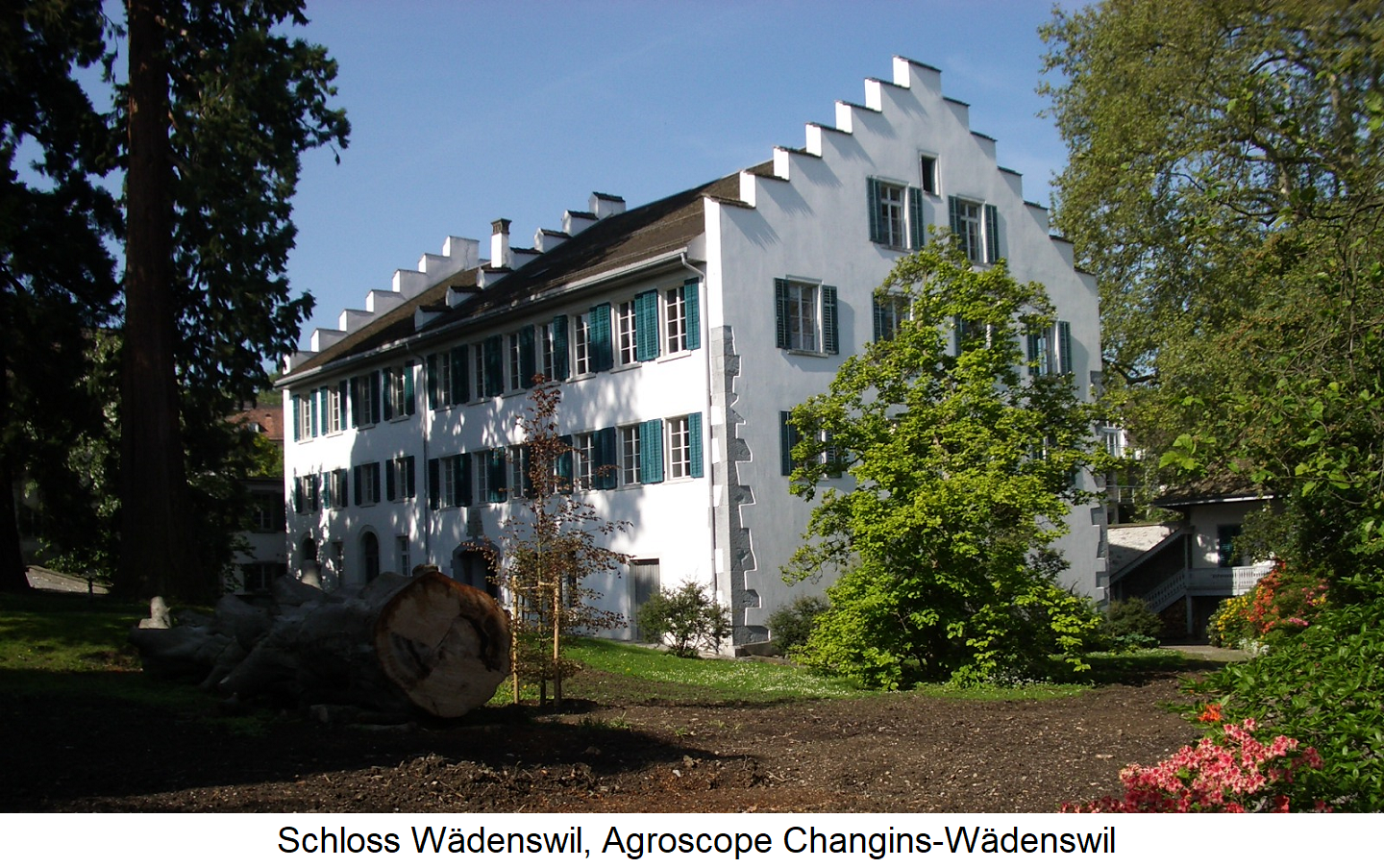 Wädenswil - Wädenswil Castle, Agroscope Changins-Wädenswil