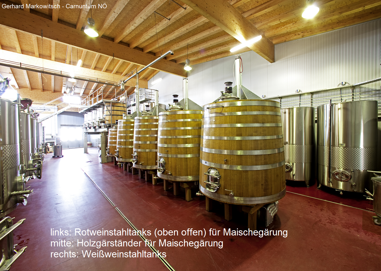 Fermentation: red wine steins tanks (open at the top) for mash fermentation, wood fermentation stands for mash fermentation, white wine stain tanks