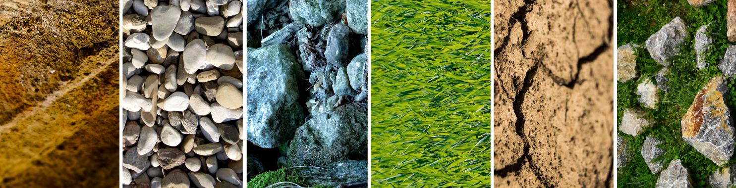 Bodentyp -  Sand, Geröll, Gras, Erde