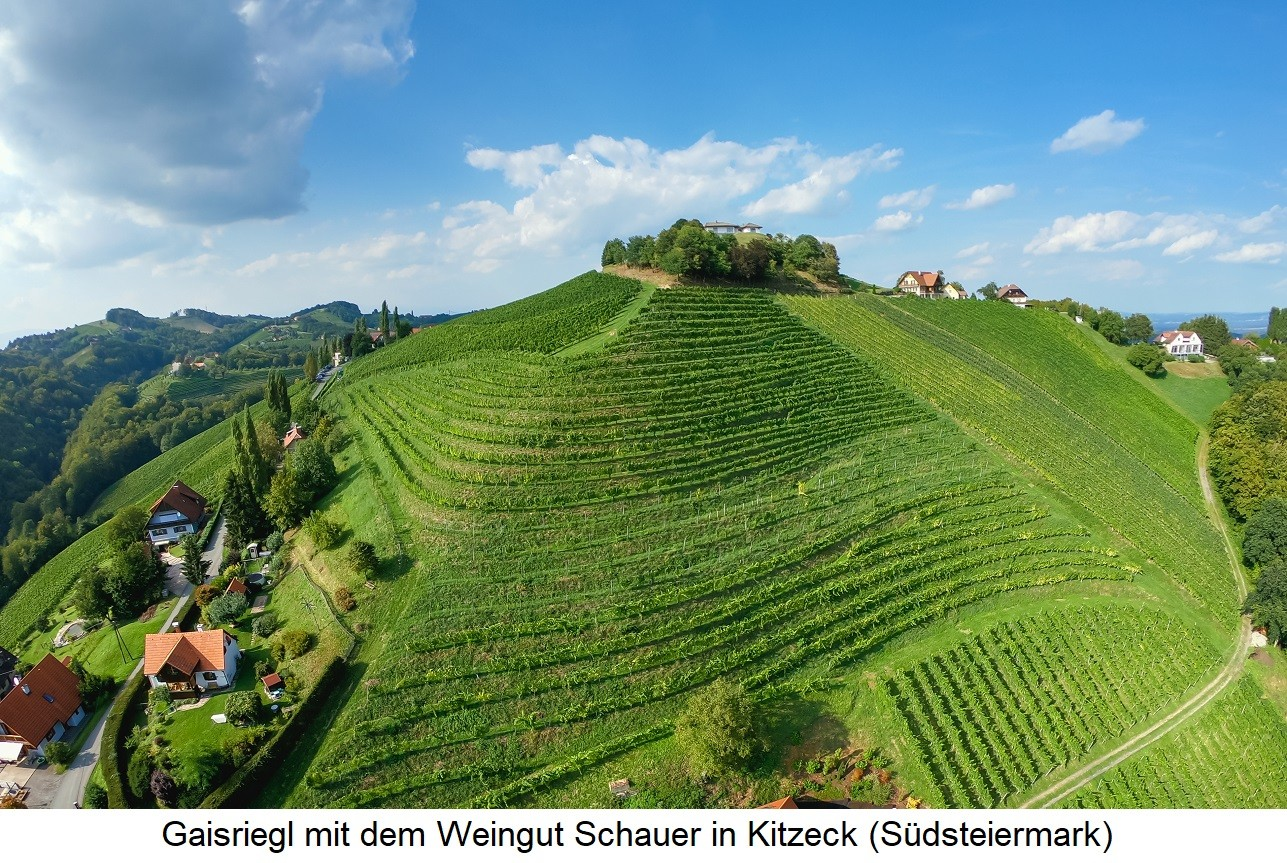 Gaisriegl - with the Schauer winery