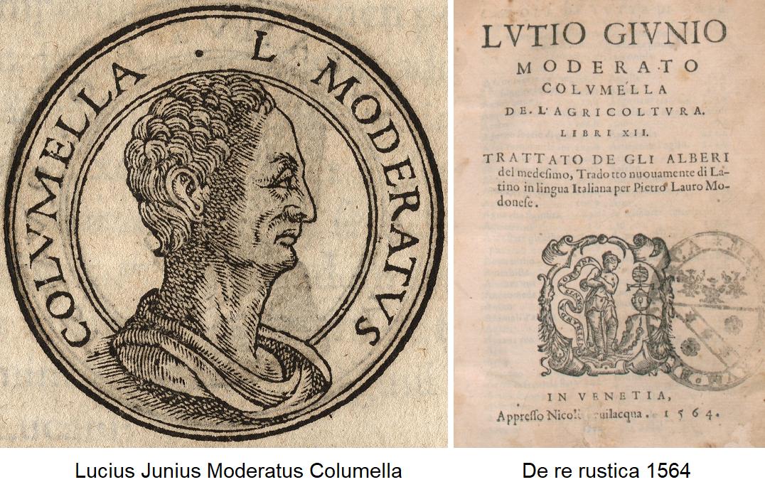 Columella - Portrait and Edition De re rustica 1564