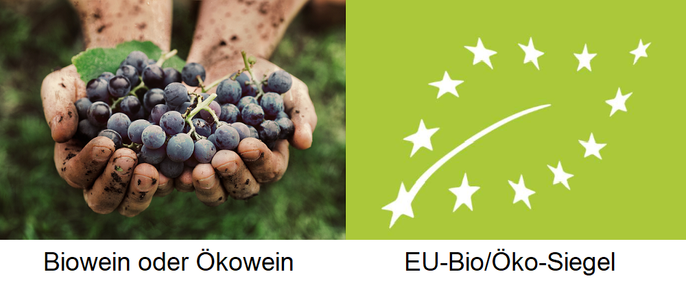 Organic wine - grapes in hand and EU seal