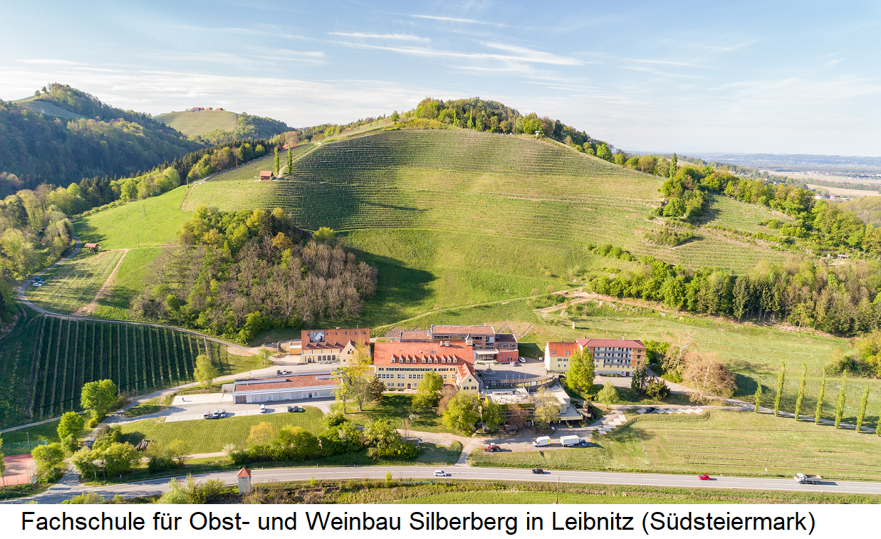 College for fruit and viticulture Silberberg in Leibnitz (Southern Styria) with above the vineyards Glaser and quarry