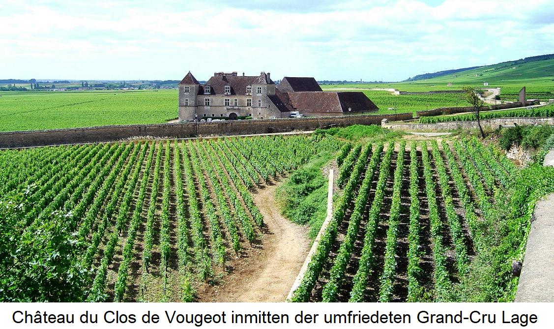 Clos - Château du Clos de Vougeot ínmitten der Grand-Cru Lage Clos de Vougeot