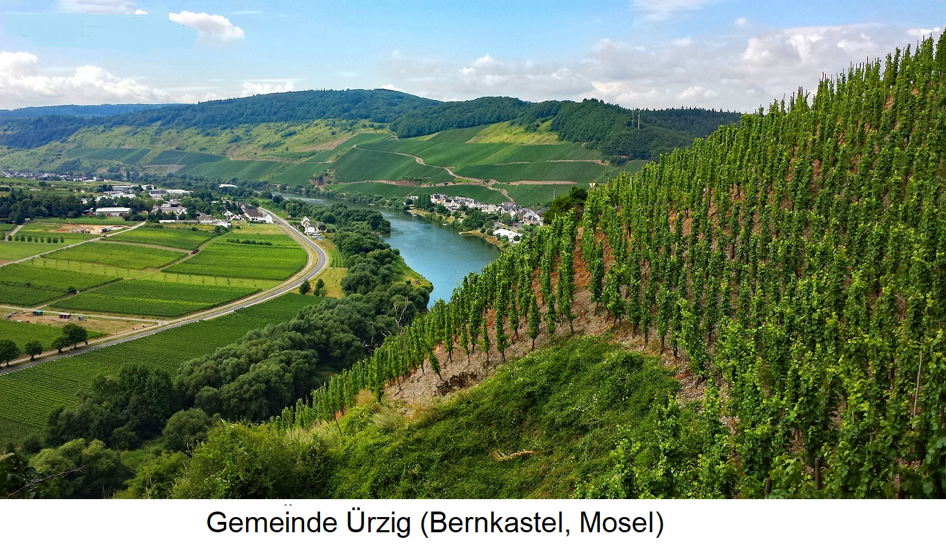 Würzgarten - Gemeinde Ürzig (Bernkastel, Mosel)