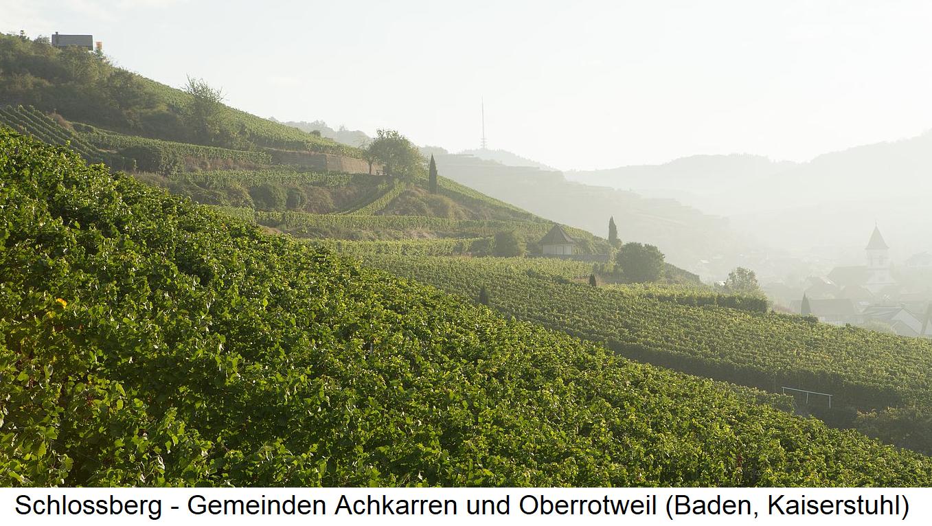 Schlossberg - communities Achkarren and Oberrotweil (Baden, Kaiserstuhl)