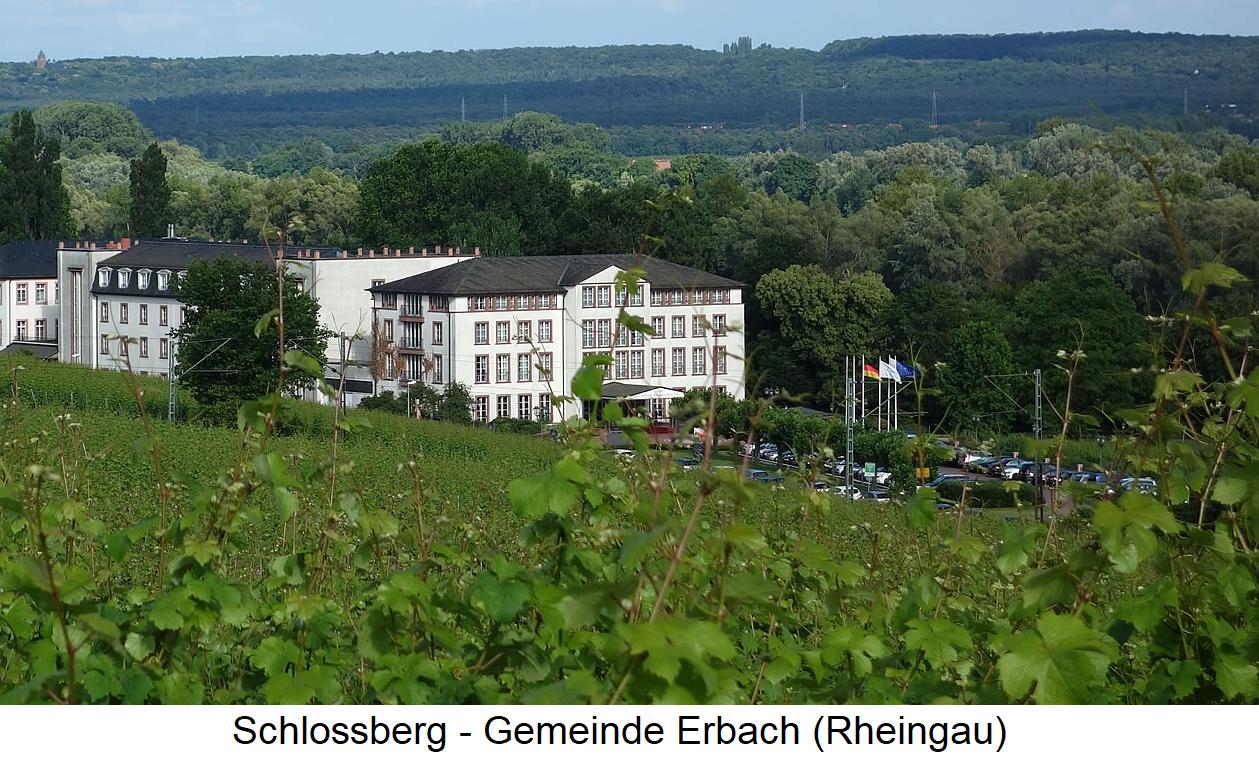 Schlossberg - community Erbach (Rheingau)