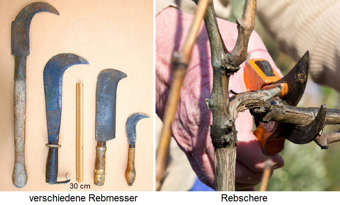 Rebmesser - different types Rebmesser and pruning shears