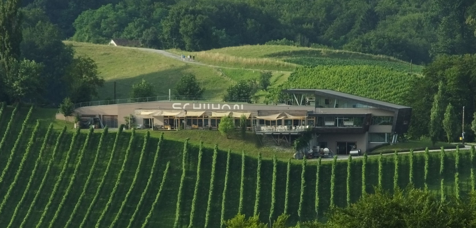 Schilhan - winery building in the middle of the vineyards