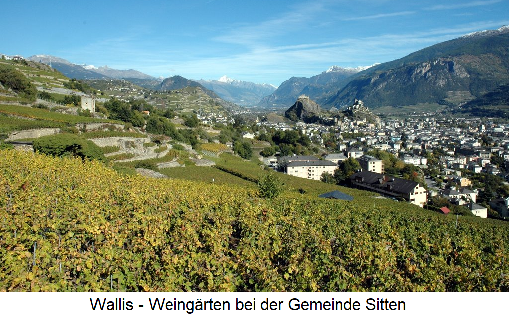 Valais - Vineyards near Sion