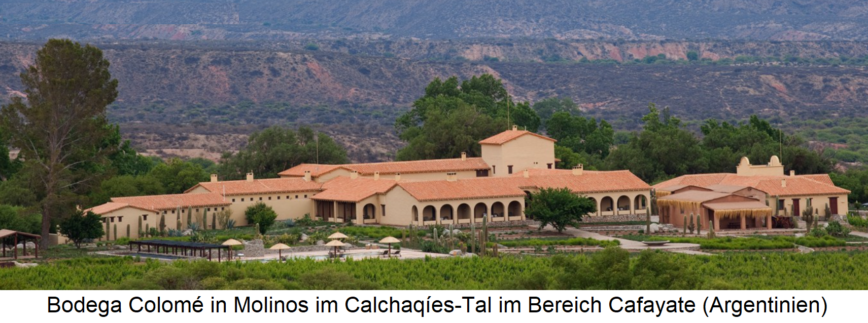 Bodega Colomé in Molinos in the Calchaqíes Valley in the Cafayate area in the Salta region of Argentina