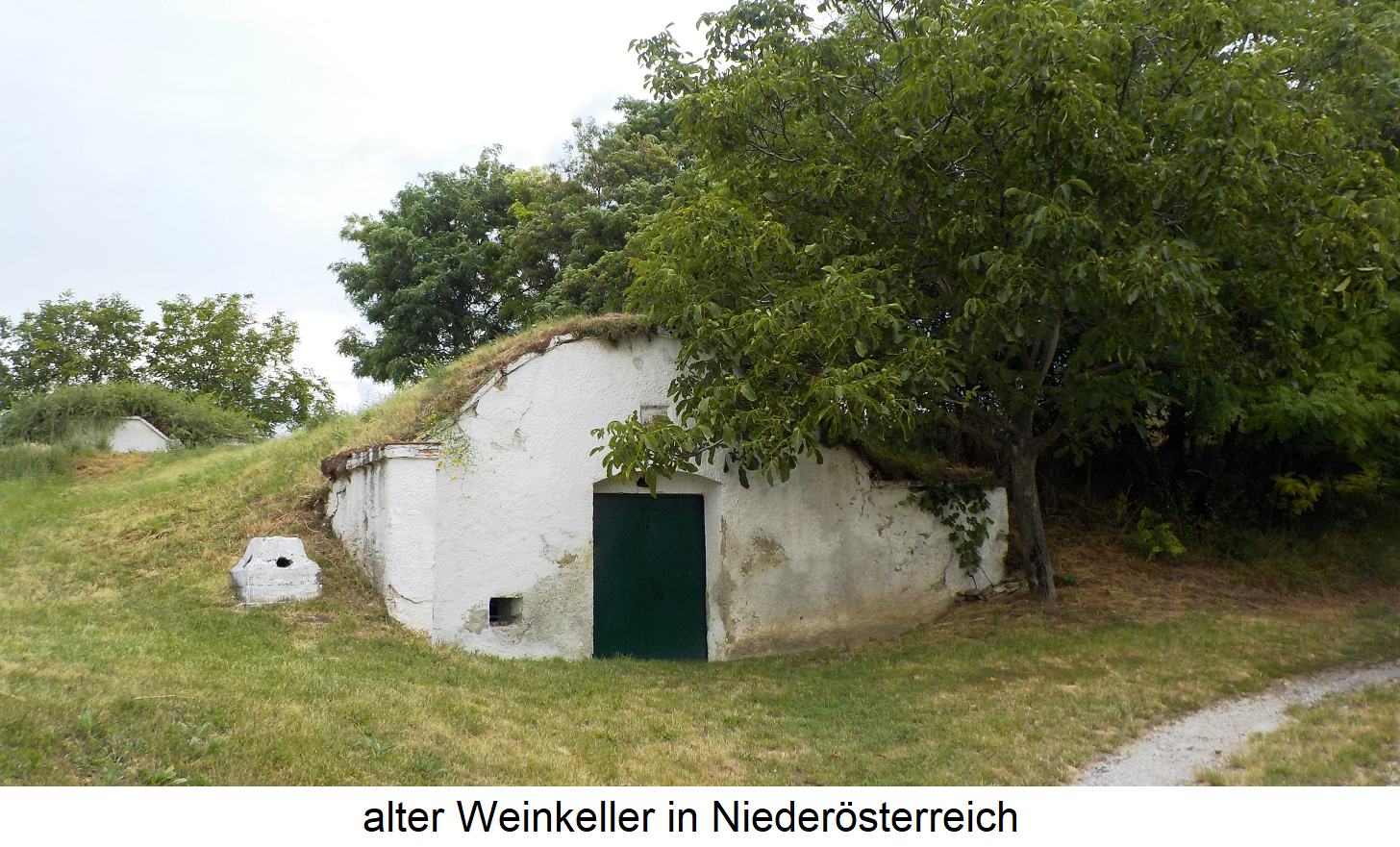 Customs in viticulture - old wine cellar (earth cellar) in Lower Austria