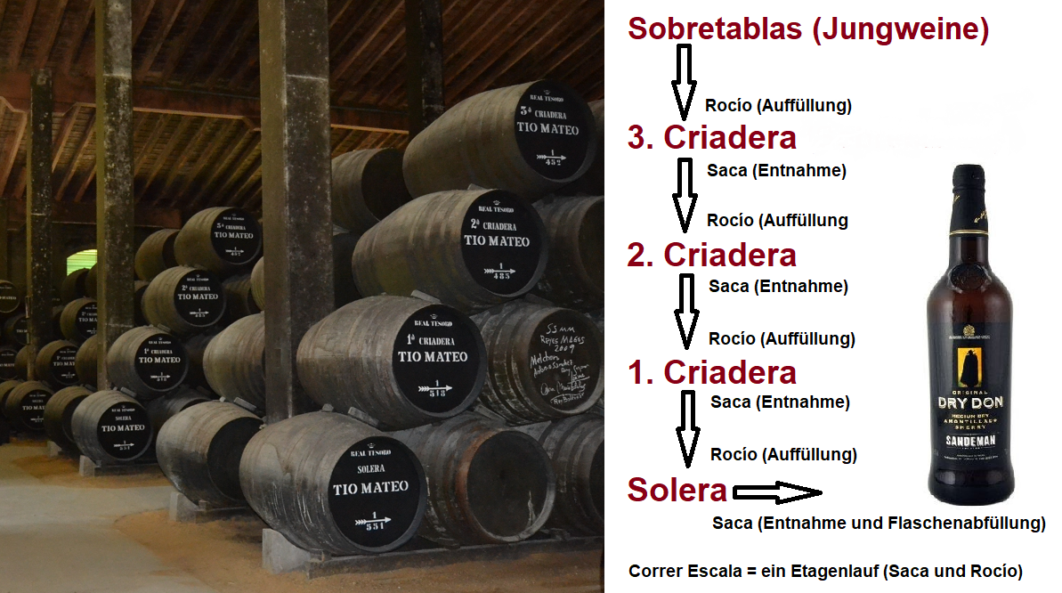 Sherry - Solera system and labels